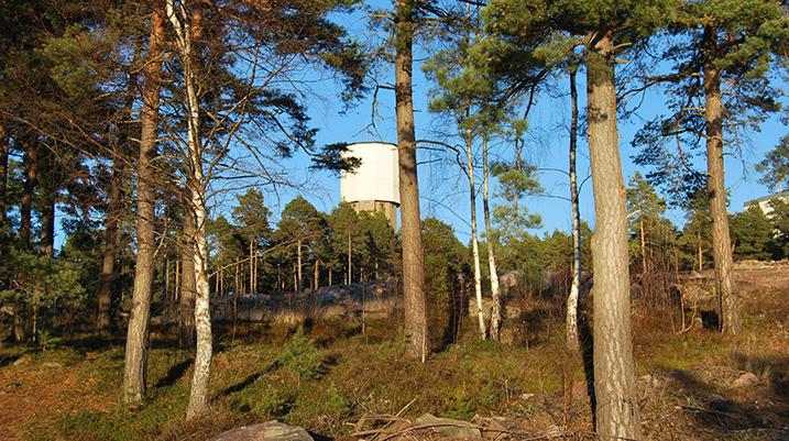 Vattentornet med skog i förgrunden.