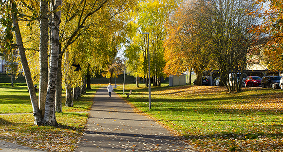 Gångväg på Skoghall i vackra höstfärger. En person går på vägen långt bort.