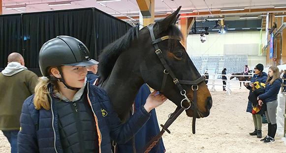 Hannah Stenwreth, ung tjej, klädd. blått och med ridhjälm tillsammans med sin ponny Atlas. Profil på båda. Ser bara deras huvuden. Platsen är Elmia i Jönköping.